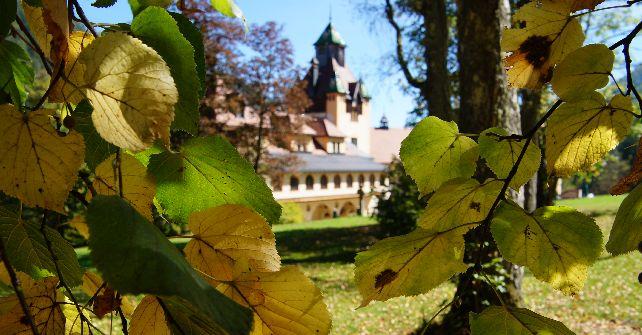Herbsterlebnis<br>von 31.10. – 3.11. ab € 213,00