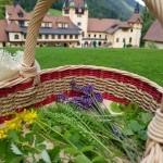 Schloss mit Kräuterkorb