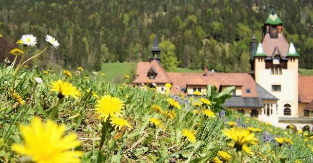 Kräutlerei und Blütenzauber <br> rund um Schloss Kassegg ab € 220,00