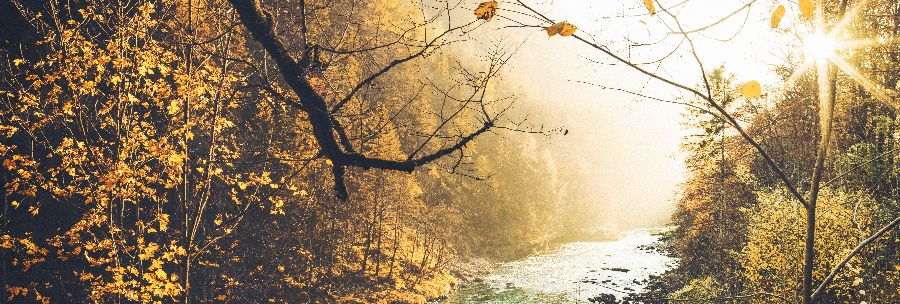 Herbst_Enns_900x300